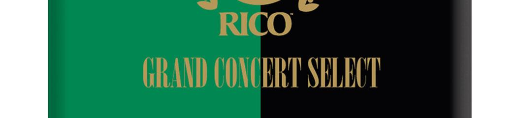 Anche sax alto Grand Concert Select